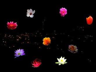 SternenBlüten-Universum